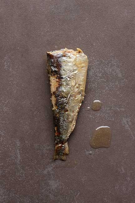 http://peperodriguez.com/files/gimgs/th-6_Lata-Sardinas-Blanco0544.jpg